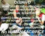 the-best-powerful-traditional-herbalist-in-nigeria2348055664179-small-0