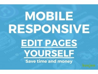 Affordable Mobile Responsive WordPress Web Design and SEO, from £399