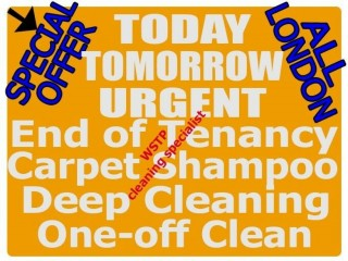 All London SHORT Notice DEEP ONE OFF End of Tenancy Cleaning Carpet Cleaners Domestic Clean Services