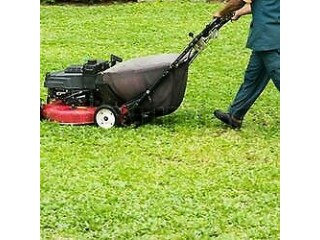 Garden Services,Landscaping,Fencing,Slabbing,Patios ,Garden cleaning and maintenance,Turfing