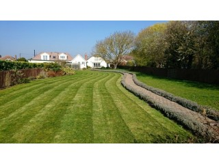 CAMBRIDGE GARDENING SERVICES GARDEN CLEARANCE AND REDESIGN AND MAINTENANCE