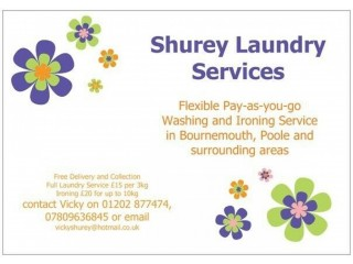 ** Washing and/or Ironing Service ***