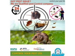 Pest Control Services in London Rat Mice Bedbugs Cockroaches wasps flies removal 100%