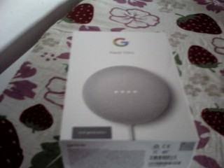 Google Mini Nest