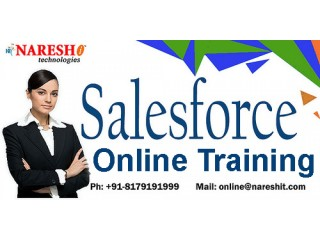 SalesForce Online Training - Naresh I Technologies