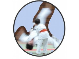 Kids Martial Arts - Aikido