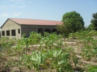 Building land and house for sale in the Gambia.