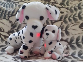 Interactive Dalmation with Puppy