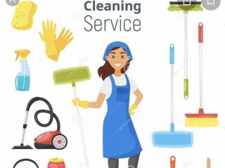 Domestic cleaner
