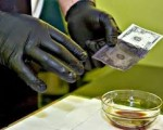 chemical-for-cleaning-black-money-contact-us-27760970595-small-1