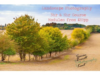 Photography Beginner Courses