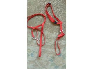 Very small dog harness and lead