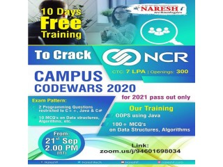 10 Days Free Training and Exam Pattern on How to crack NCR Company Interview - Naresh IT