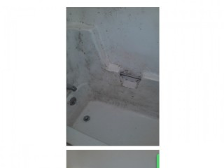 Professional End of Tenancy Cleaning