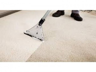 Get Your Carpets Ready for Autumn call Arrow Carpets Cleaners