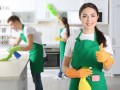 domestic-cleaning-services-by-the-shoreditch-cleaners-10-off-first-clean-hackney-london-small-0