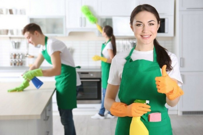 domestic-cleaning-services-by-the-shoreditch-cleaners-10-off-first-clean-hackney-london-big-0