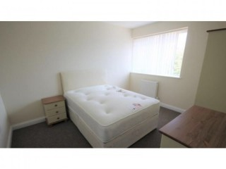 Room for rent in lovely 5 bedroom HMO