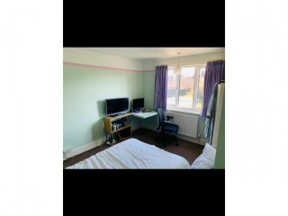 Large garden facing double room in a 3 bed two-story house