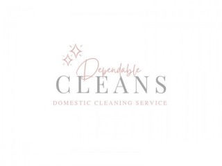 Dependable domestic cleaner