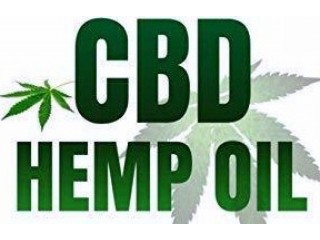 The Doctor Hemp / Cbd Oil