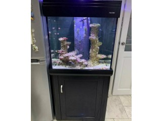 Aqua one 195 marine tropical fish tank aquarium with setup ( Black  )
