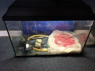 Fish tank setup For Sale