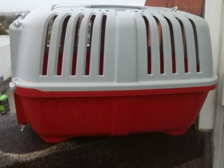 Stefanplast Plastic Pet Carrier Like New