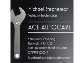 Ace AutoCare Garage