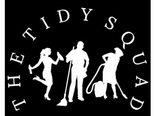 Domestic Cleaning / The Tidy Squad Ltd