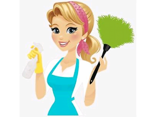 Experienced Cleaner in Bangor and surrounding areas, Cleaning Caddy