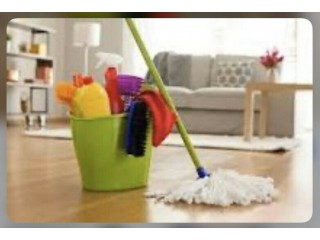 Domestic cleaner Weekends