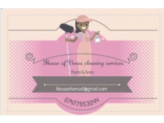 Cleaner & Ironing Available From £13 .00 Bracknell ,Ascot,Sunningdale,Virginia water