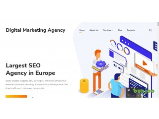 SEO and Digital Marketing company