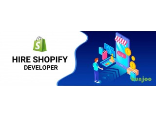 Developer Shopify