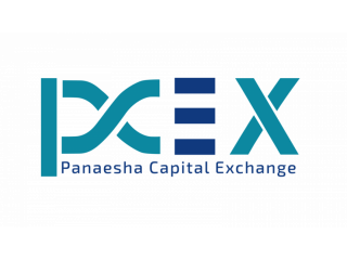 Business & Investment Opportunities in USA - PCEX.IO